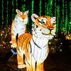 Best Zoo Lights