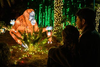 L.A. Zoo Lights