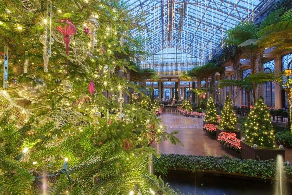 Winning garden puts up half a million lights