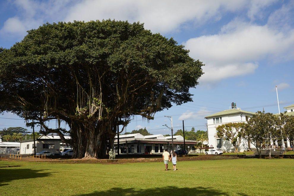 Kalakaua Park