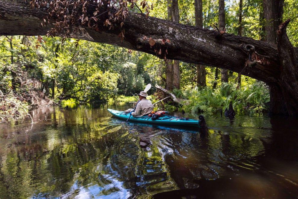 Hillsborough River canoeing