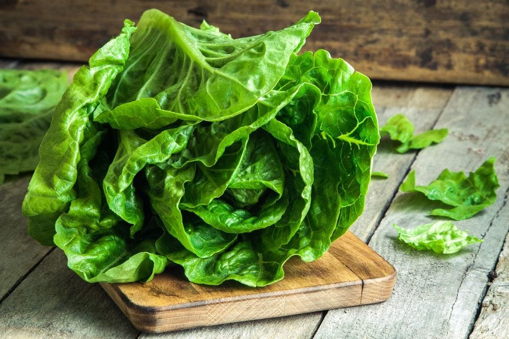 As ripe and green a head of romaine as we could ever hope to see