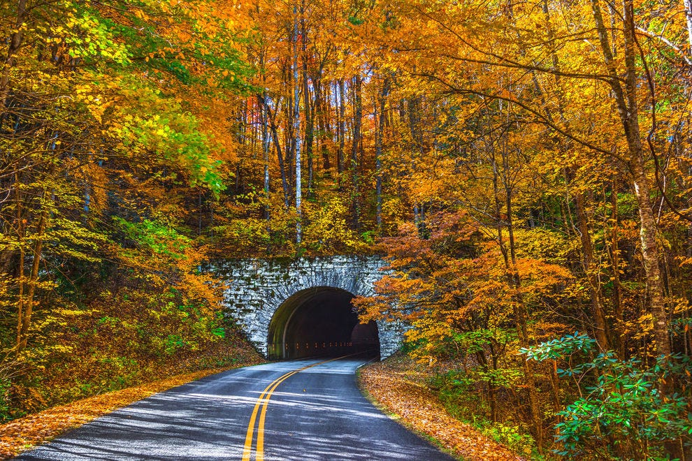 Autumn on the Blue Ridge Parkway