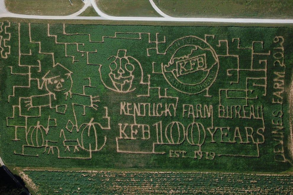 Devine's Corn Maze