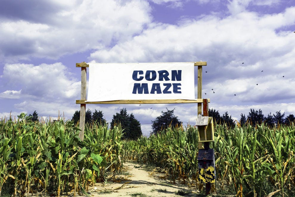 These mazes offer a fun and family-friendly challenge