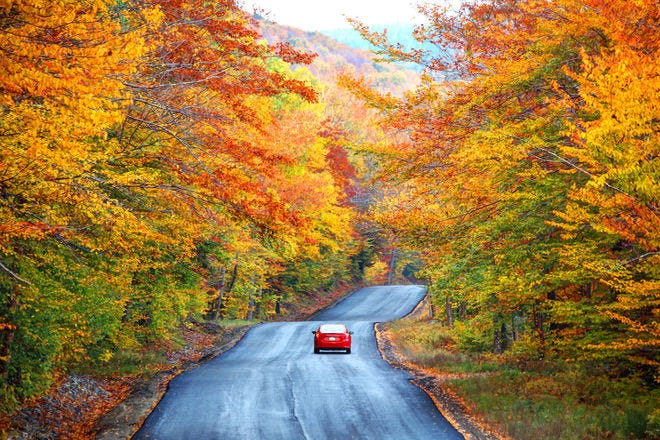 Your guide to the best places for fall colors this year