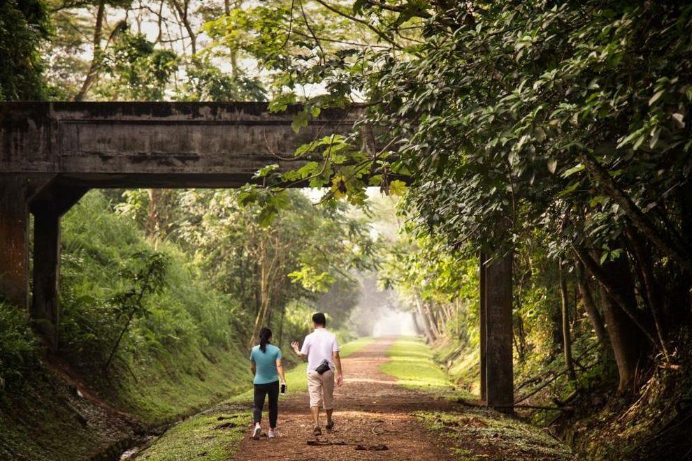 Rail Corridor hiking