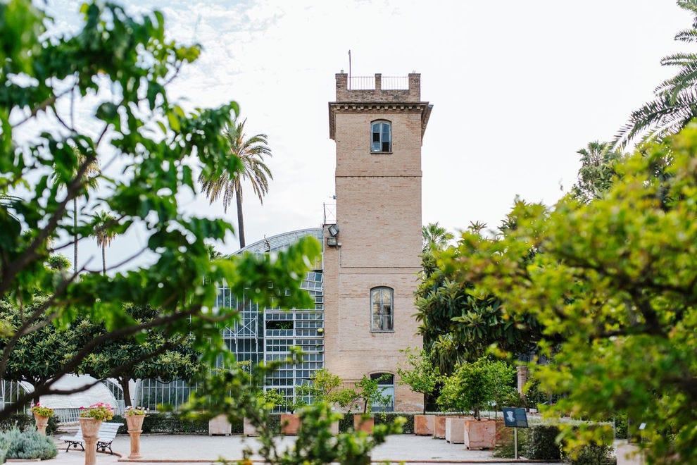 Botanical garden at University of Valencia
