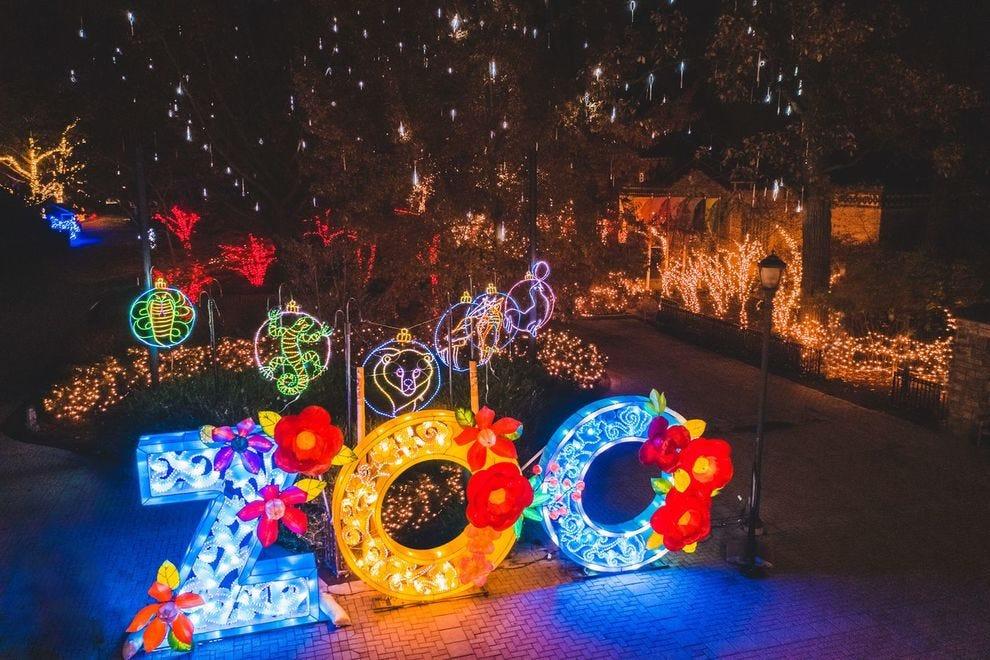 San Diego Zoo Christmas 2021 Best Zoo Lights Winners 2020 Usa Today 10best