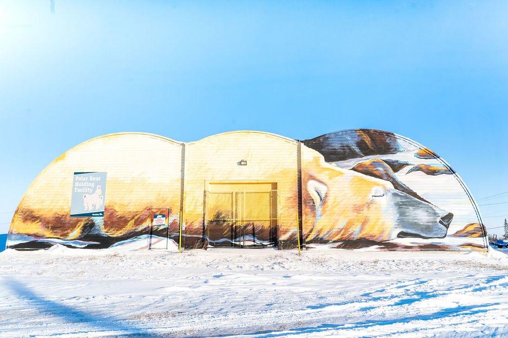 Polar Bear Holding Facility