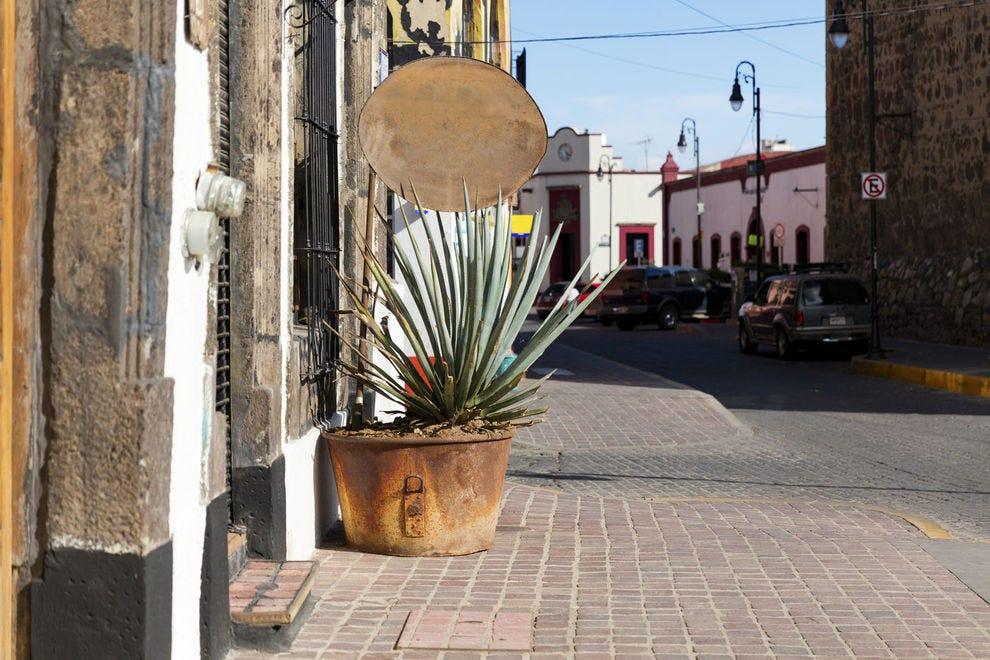 Tequila histórico