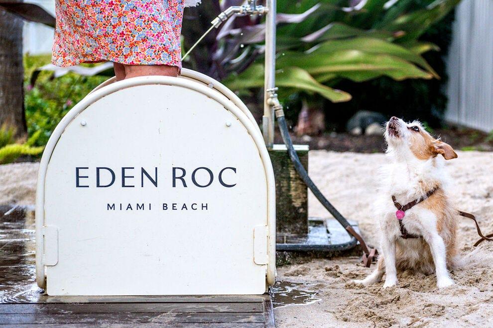Lucy at Eden Roc Miami Beach, Florida