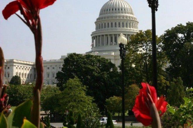 Sightseeing in Washington