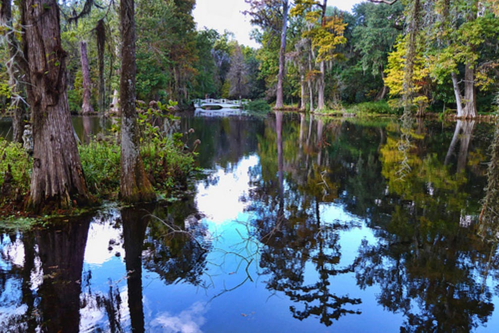 Magnolia Plantation: Charleston Attractions Review ...