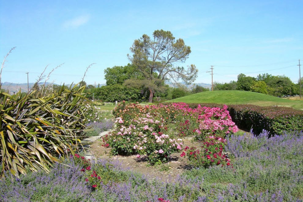 San Jose Heritage Rose Garden San Jose Attractions Review 10best Experts And Tourist Reviews