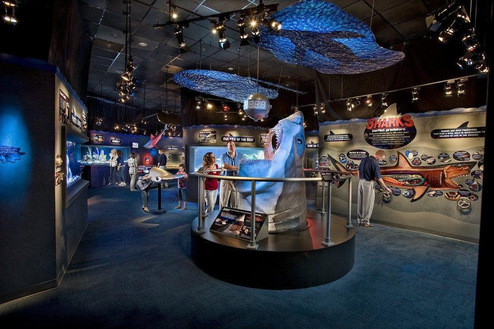 Ripley's Aquarium Myrtle Beach: Myrtle Beach Attractions ...