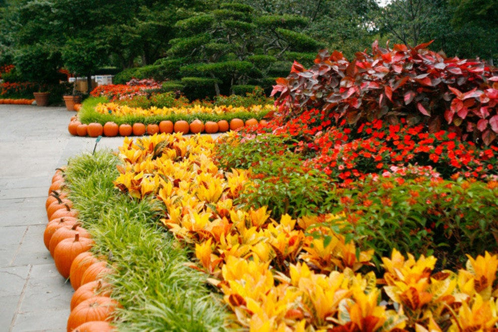Dallas Arboretum And Botanical Garden Dallas Attractions Review 10best Experts And Tourist