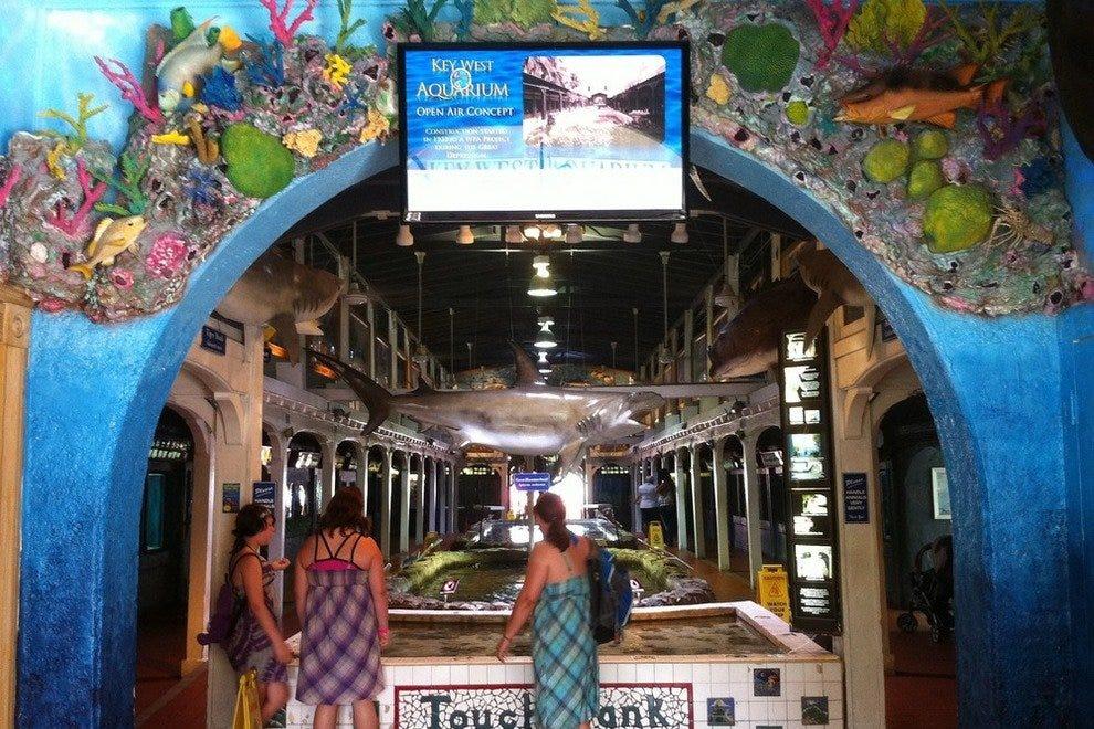 Key West Aquarium Key West Attractions Review 10best Experts And Tourist Reviews