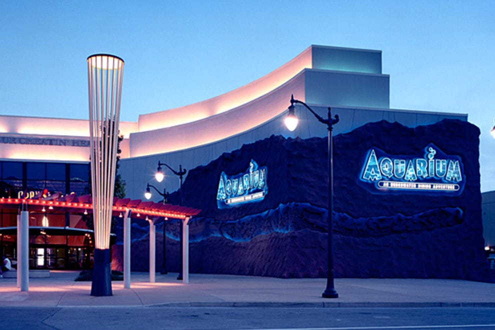 Downtown aquarium houston attractions review 10best for Best places for dinner in nashville