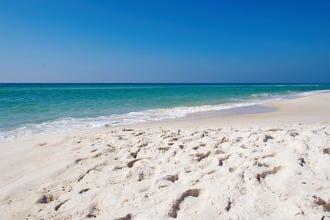 Alvin S Island Panama City Beach Fl Hours