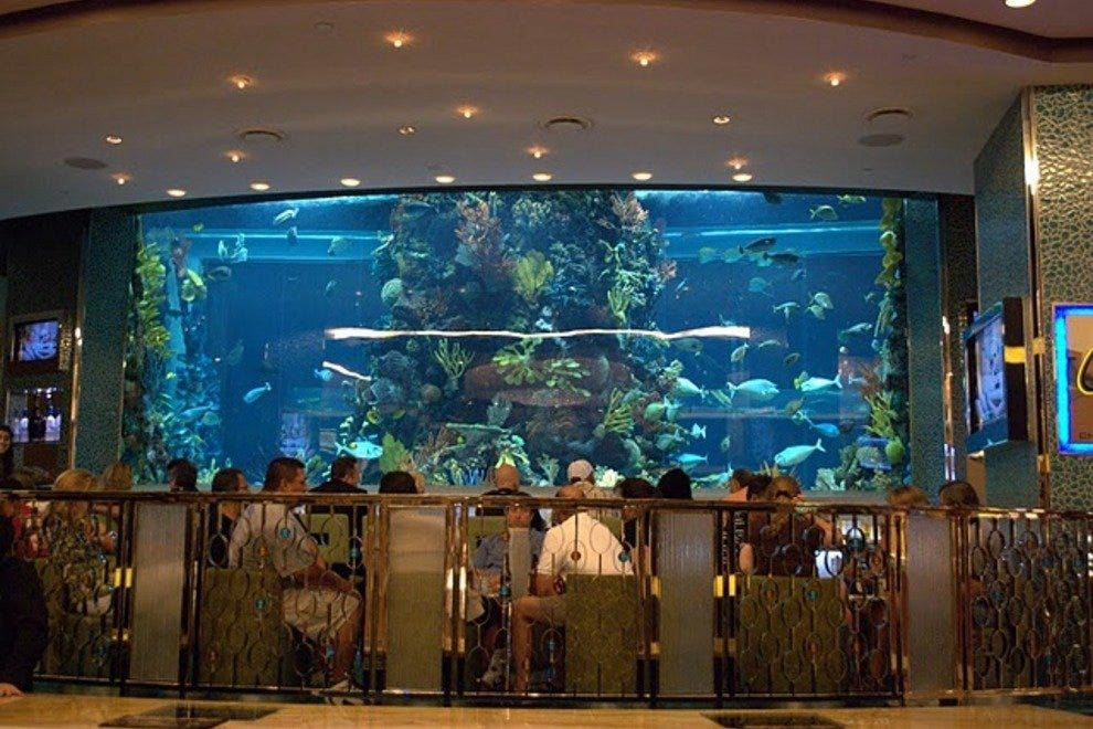 Las vegas seafood restaurants 10best restaurant reviews for Cuisine las vegas