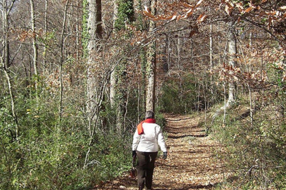 Atlanta parks 10best park reviews for Lull water