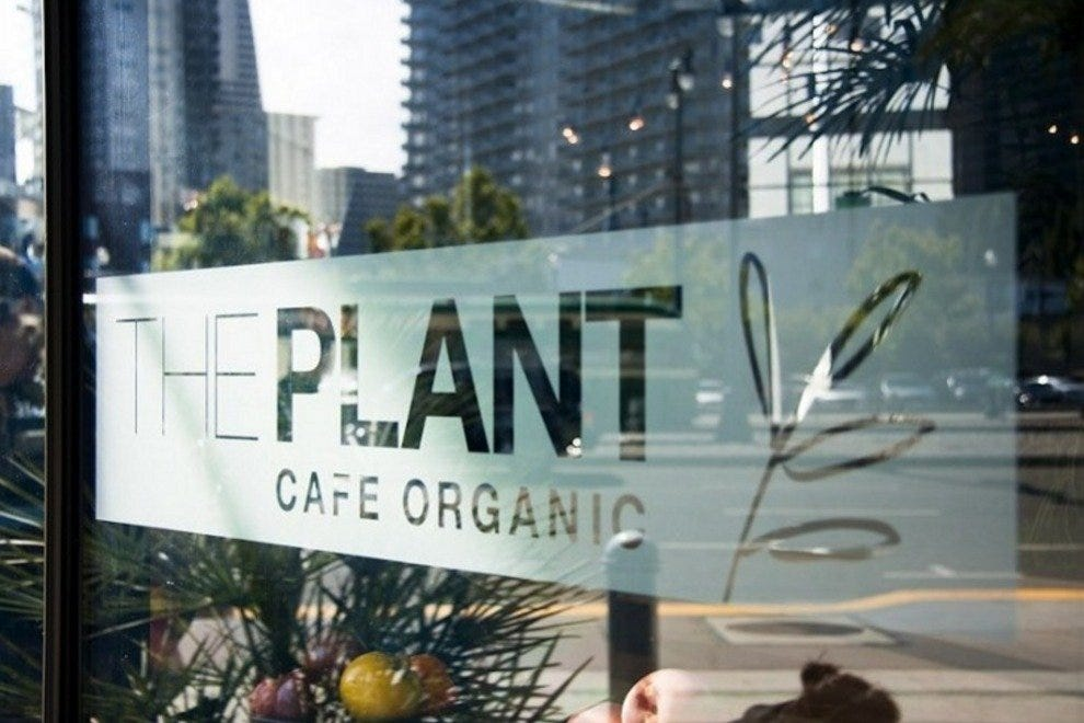 The Plant - Cafe Organic