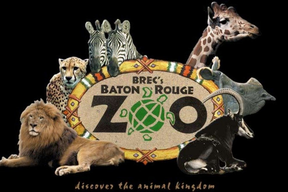 Image result for brec's baton rouge zoo