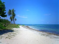 virginia_key_beach-sm